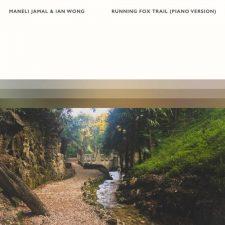 تکنوازی پیانو آرامش بخش Maneli Jamal در آهنگ Running Fox Trail