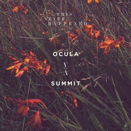 موسیقی پراگرسیو هاوس Summit اثری از OCULA
