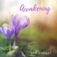 موسیقی بی کلام Awakening تکنوازی پیانو بهاری و دل انگیز از Pam Asberry
