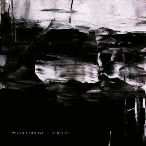 آلبوم موسیقی بی کلام Sensible اثری از Wilson Trouve