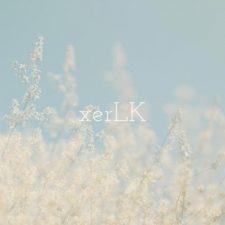 موسیقی امبینت آرامش بخش Hopes and Dreams اثری از xerLK
