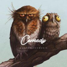 موسیقی بی کلام Comedy اثری از AShamaluevMusic