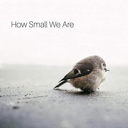 گیتار آرامش بخش How Small We Are اثری از Agustín Amigó