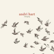 گیتار آرامش بخش Changing اثری از Andri Hart