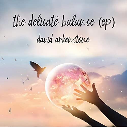 موسیقی بی کلام The Delicate Balance اثری از David Arkenstone