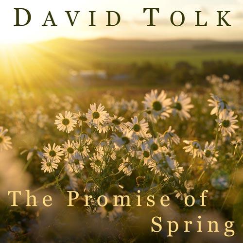 موسیقی بی کلام The Promise of Spring اثری از David Tolk