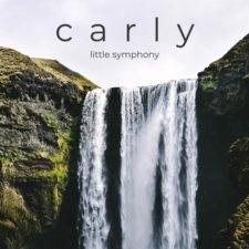 موسیقی بی کلام Carly اثری از Little Symphony