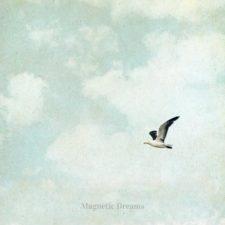 موسیقی امبینت It's Love اثری از Magnetic Dreams
