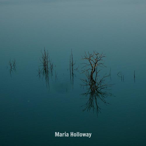 موسیقی بی کلام Farewell اثری از Maria Holloway