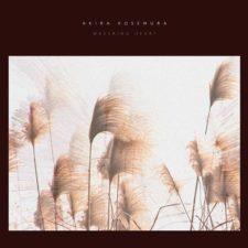 موسیقی بی کلام پیانو Wavering Heart اثری از Akira Kosemura