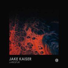 موسیقی پراگرسیو هاوس Larkspur اثری از Jake Kaiser