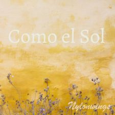 گیتار آرام و دلنشین Nylonwings در آهنگ Como el Sol