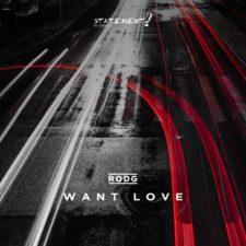 موسیقی پراگرسیو هاوس Want Love اثری از Rodg