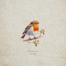 موسیقی بی کلام آرام بخش Robin اثری از S.A. Karl