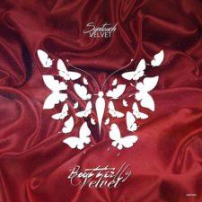موسیقی تکنو Velvet اثری از Syntouch