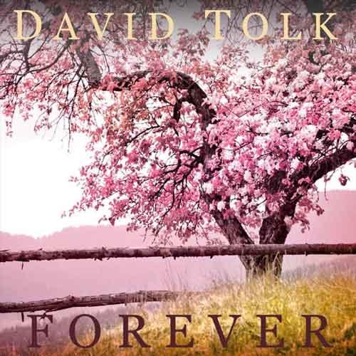 آهنگ بی کلام Forever پیانو آرامش بخش و صلح آمیز از David Tolk