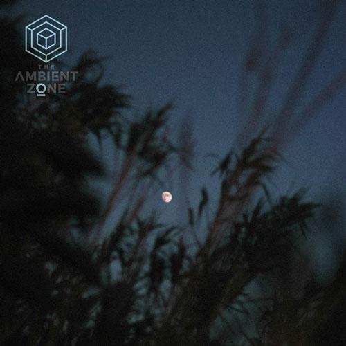 آهنگ بی کلام Illusion Of Sense اثری خیال انگیز و رویایی از Dear Gravity