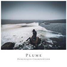 آهنگ بی کلام Plume پیانو حزن آلود از Dominique Charpentier