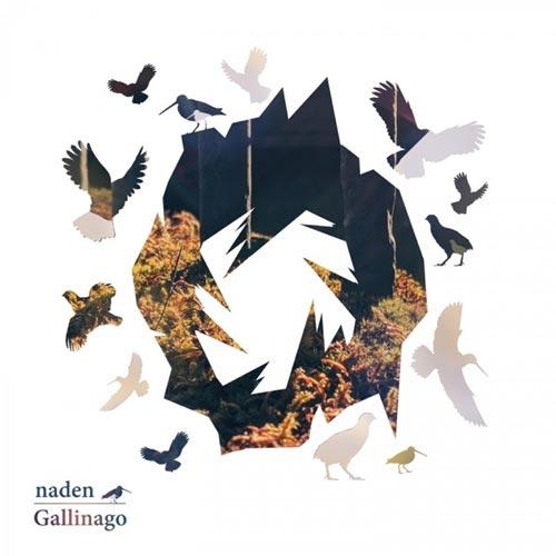 آلبوم موسیقی ترنس گالیناگو (Gallinago) اثری از Naden