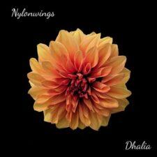 موسیقی بی کلام Dhalia گیتار آرامش بخش از Nylonwings