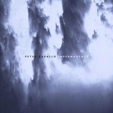 موسیقی پیانو آرام Impermanence اثری از Peter Cavallo