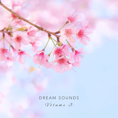 آلبوم موسیقی بی کلام آواهای رویایی بخش سوم (Dream Sounds Vol. 3)