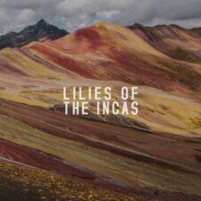 آهنگ بی کلام Lilies Of The Incas پیانو آرام و صلح آمیز از Finn Forsberg