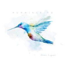 آهنگ بی کلام Hummingbird تکنوازی پیانو آرامش بخش از Kendra Logozar