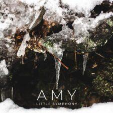 آهنگ بی کلام Amy پیانو امبینت آرامش بخش از Little Symphony