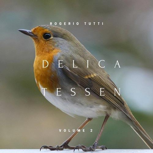 موسیقی کلاسیک Delicatessen Vol. 2 اثری آرامش بخش از Rogerio Tutti