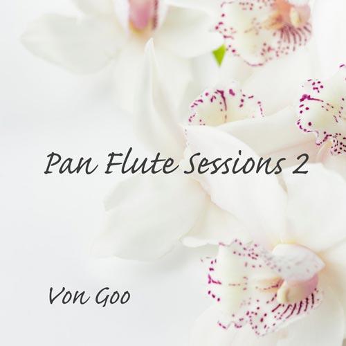 آلبوم موسیقی بی کلام Pan Flute Sessions 2 پن فلوت آرامش بخش از Von Goo