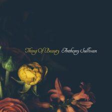 موسیقی بی کلام Thing of Beauty پیانو آرامش بخش از Anthony Sullivan