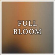 موسیقی بی کلام Full Bloom گیتار آرامش بخش از Maneli Jamal