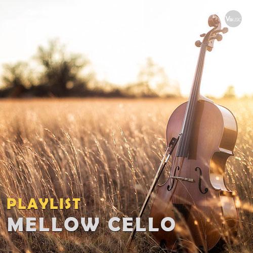 پلی لیست ویولن سل آرام و دلپذیر (Mellow Cello)
