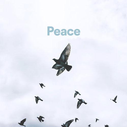 پلی لیست موسیقی بی کلام ملایم و آرام (Peace)