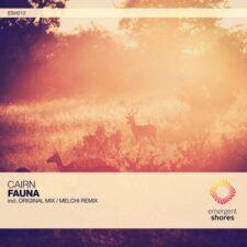 موسیقی پراگرسیو هاوس Fauna اثری از Cairn