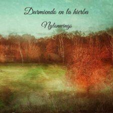 موسیقی بی کلام Durmiendo En La Hierba از Nylonwings
