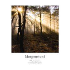پیانو آرام و دلنشین Morgonstund اثری از Oskar Kappland
