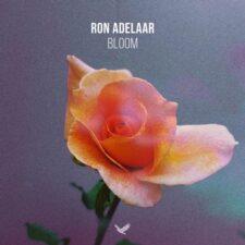 آهنگ پیانو آرام بخش Bloom اثری از Ron Adelaar