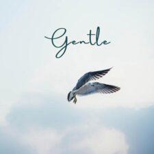 آهنگ بی کلام Gentle گیتار آرامش بخش از Agustín Amigó