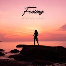 موسیقی بی کلام Feeling اثری از Ashamaluevmusic