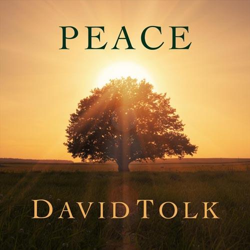 موسیقی بی کلام آرامش بخش Peace اثری از David Tolk