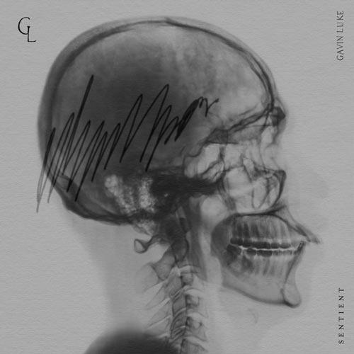 موسیقی کلاسیکال Sentient اثری آرام بخش و احساسی از Gavin Luke