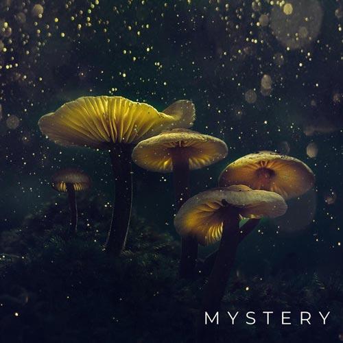 آهنگ بی کلام Mystery اثری رازآلود از Morninglightmusic