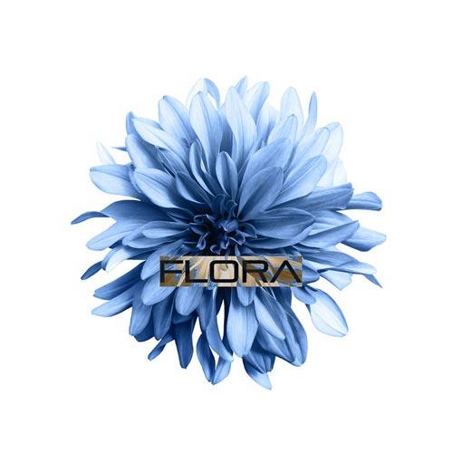 موسیقی امبینت Flora اثری خیال انگیز از Peter Ries