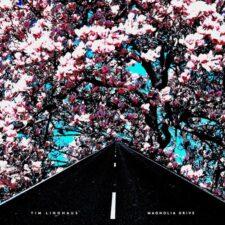 پیانو آرام و دلنشین Magnolia Drive اثری از Tim Linghaus