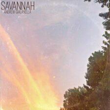 گیتار گرم و صمیمانه Savannah اثری از Andrew Gialanella