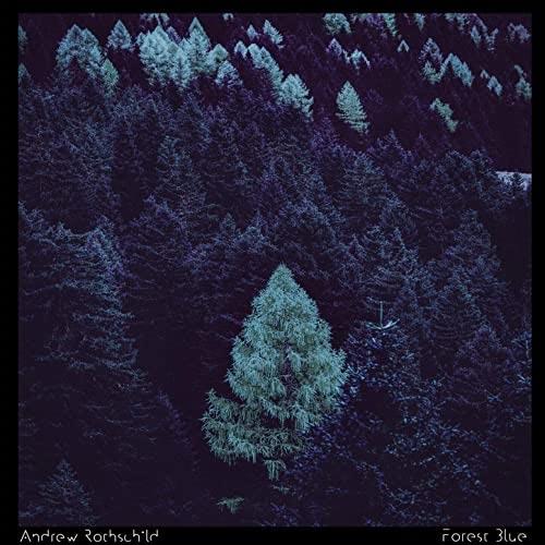 موسیقی داون تمپو Forest Blue اثری از Andrew Rothschild