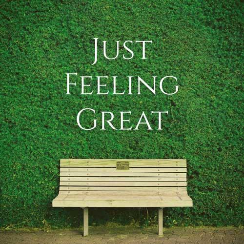 گیتار آرامش بخش Just Feeling Great اثری از Nylonwings
