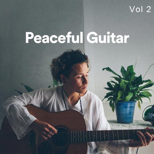 پلی لیست گیتار آرام و صلح آمیز بخش دوم (Peaceful Guitar Vol 2)